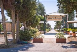 ingresso oasi di torretta